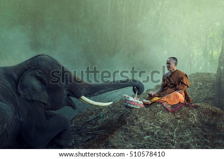 Monk meditating in forest with elephant