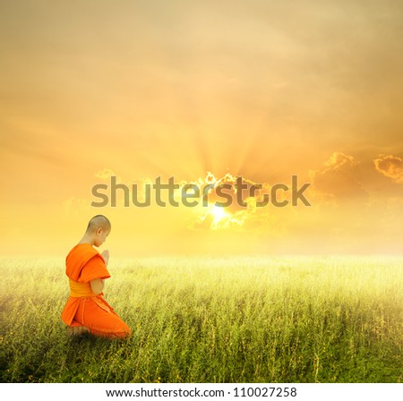 Monk pray in grass fields and sunset - stock photo