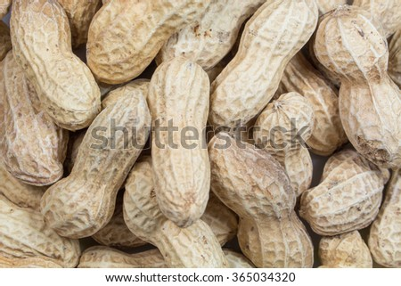 Monkey nuts, peanuts or groundnuts
