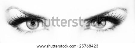 Monochrome eyes  on white background