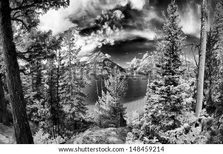 Monochrome image of Jenny Lake in Grand Teton National Park, WY - stock photo
