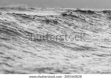 Monochrome Seascape Of Coronado Island Shoreline Waves In California, USA - stock photo