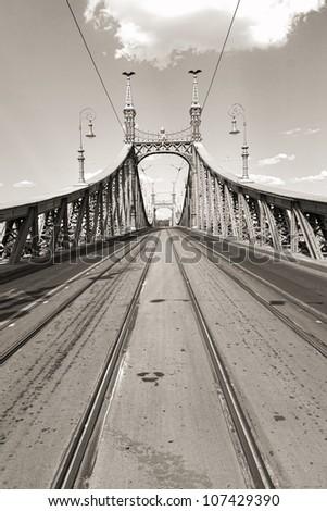 Monochrome shot of the Liberty Bridge in Budapest , Hungary - stock photo