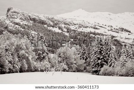 Monochrome winter Alpine landscape