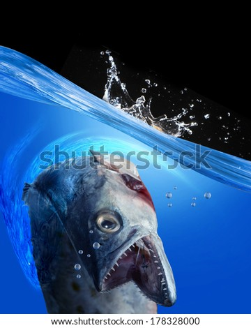 Monster fish with room for your type. - stock photo