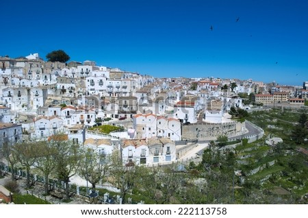 MONTE SANT ANGELO, ITALY, MAY 9, 2014: View over hilltop town inside gargano national park - monte sant angelo, Italy.