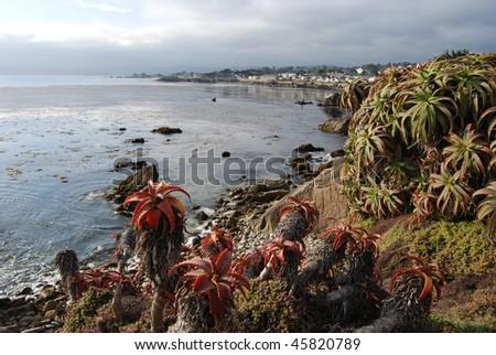 Monterey Bay, California Beach - stock photo