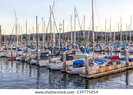 Monterey ca stock images royalty free images vectors for Monterey sport fishing