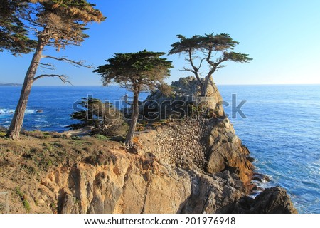 MONTEREY, CALIFORNIA - APRIL 7, 2014: Lone Cypress tree view along famous 17 Mile Drive in Monterey. Sources claim it is one of the most photographed trees in North America. - stock photo