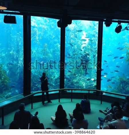 Monterey Bay Aquarium Stock Images Royalty Free Images