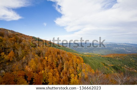 Montseny Natural Park in the fall with all  colours of trees in Catalonia (Spain).