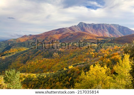 Montseny Natural Park in the fall with all  colours of trees in Catalonia (Spain). In the background you can see the mountain Les Agudes. - stock photo