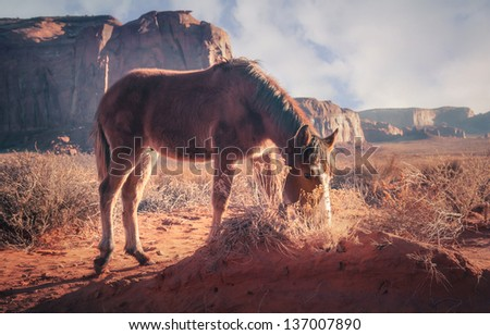Monument Valley, Utah, USA. - stock photo