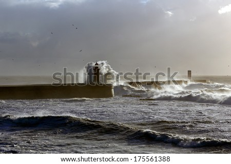 Moody evening stormy seascape - stock photo