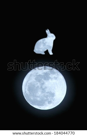 Moon and full moon rabbit