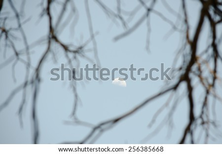 Moon on a Stick - stock photo