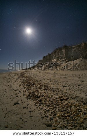 Moon shining on a sandy beach