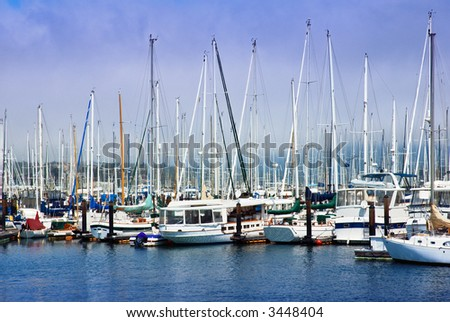 Moored sailboats in Sausalito, California harbor