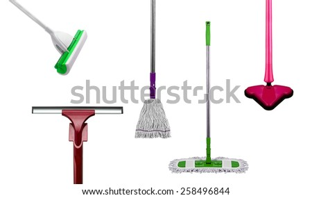 Mops isolated - stock photo