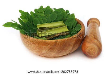 Moringa leaves and bark and mortar pestle over white background - stock photo