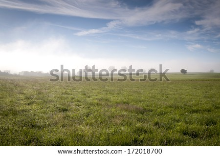 morning - stock photo