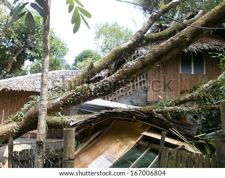 Morning after Super Typhoon Yolanda/Haiyan hits Panay island in the Philippines with horrible destruction - stock photo