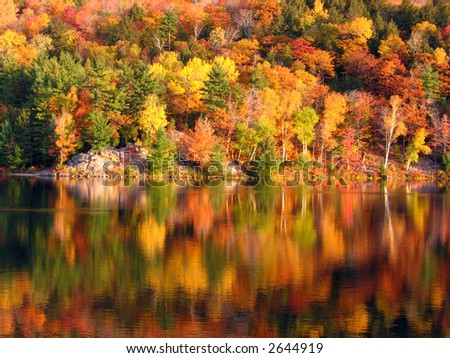 Morning at the George Lake - stock photo