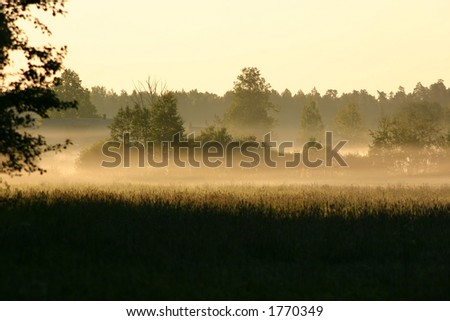 Morning fog in country - stock photo