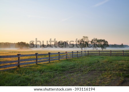 Morning fog on a field in the countryside - stock photo