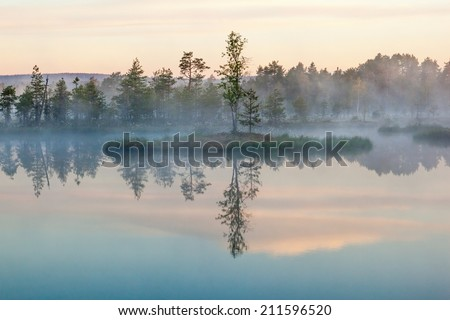 Morning fog on a lake - stock photo