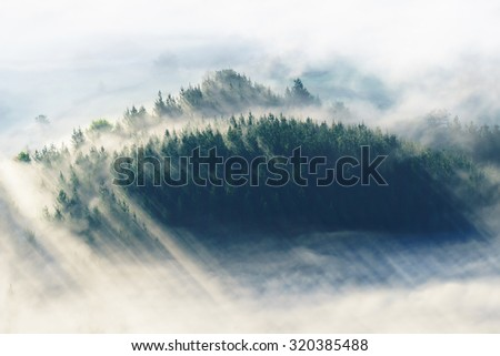 morning fog on the valley with misty forest - stock photo