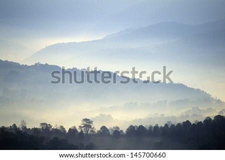 Morning fog over Scenic Highway US Route 219, WV - stock photo