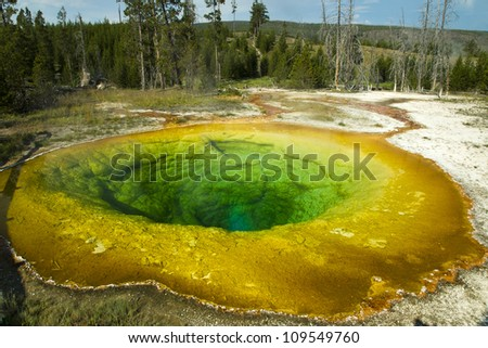 Morning Glory Pool is a hot spring in the Upper Geyser Basin of Yellowstone National Park in the United States