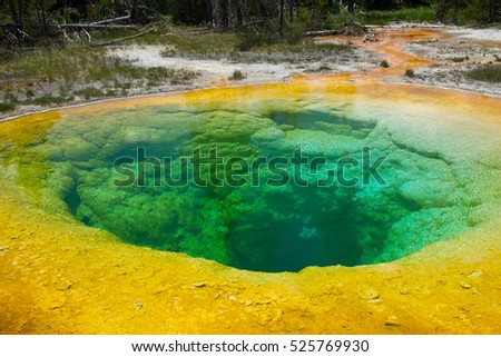 Morning Glory Pool, Upper Geyser Basin, Yellowstone National Park, Wyoming, USA