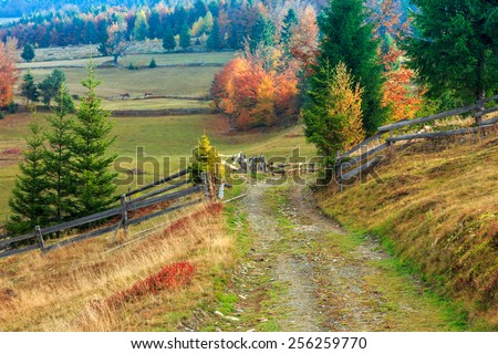 Morning in Carpathians mountain Transylvania,Romania - stock photo