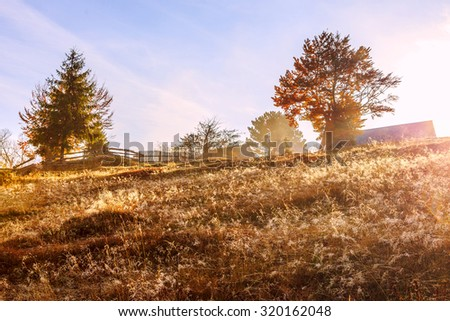 Morning in colorful autumn landscape in the Carpathian mountains. Transylvania,Romania. Europe.
