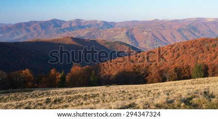 Morning in the mountains. Autumn Landscape with beech forest on the slopes. Carpathians, Ukraine, Europe