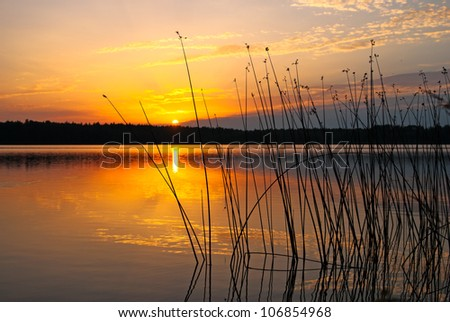 Morning lake landscape with sunrise over forest