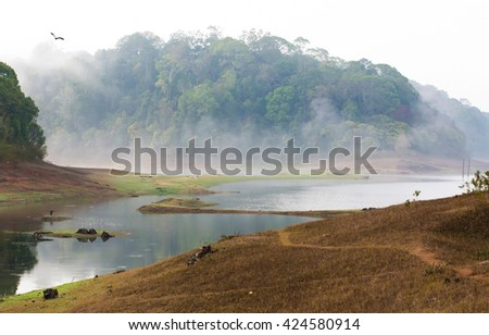 Morning landscape in National park Periyar Wildlife Sancturary, Kumily, Kerala, India - stock photo