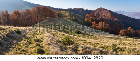 Morning landscape in the autumn. The mountain panorama with the road in the dry grass. Carpathians, Ukraine, Europe - stock photo