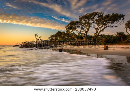 Morning light and waves at Driftwood Beach, on the Atlantic Ocean at Jekyll Island, Georgia. - stock photo