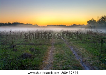 Morning mist and field road - stock photo