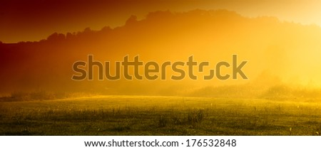 morning mist in the countryside on a sunny day, summer season