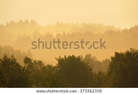 Morning mist over the forest - stock photo