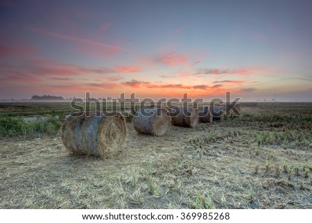 Morning Mist with rolls of haystack in paddy fields during sunrise.