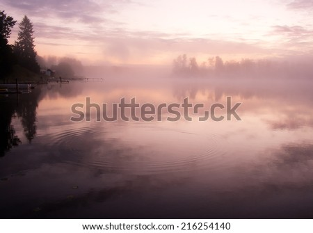 Morning nature scene (landscape): fog (mist) reflected in the water surface along with trees and shore. The Seliger lake (Russia). Can be used as a background (backdrop) or wallpaper. - stock photo