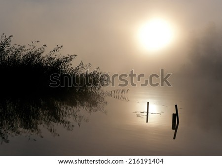 Morning nature scene (landscape): the sun in fog (mist) reflected on the water surface along with some plants (reeds, rush, cane). The Seliger lake (Russia). Can be used as a background or wallpaper. - stock photo