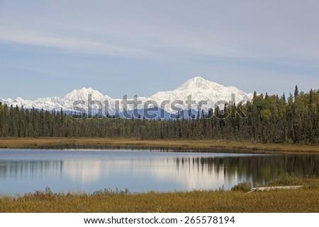 Morning near Denali mountain - stock photo