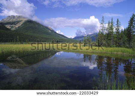 Morning reflections in a lake in Banff National Park, Canada