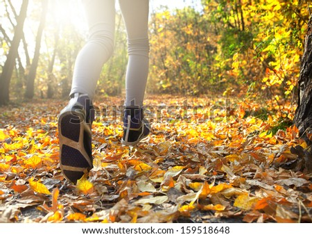morning run in the autumn forest - stock photo